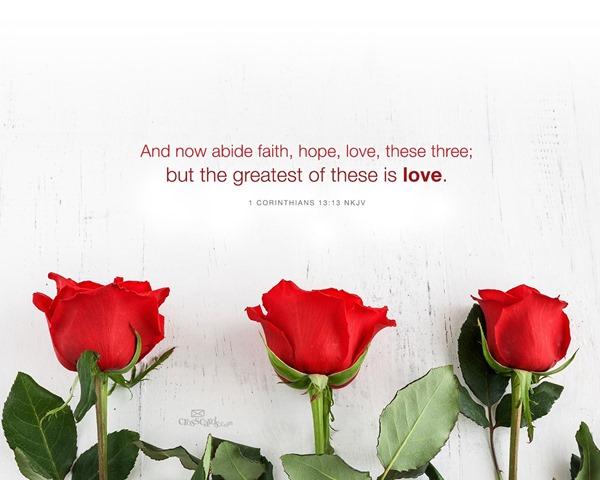 Valentine Heart Pink Love Theme (3)